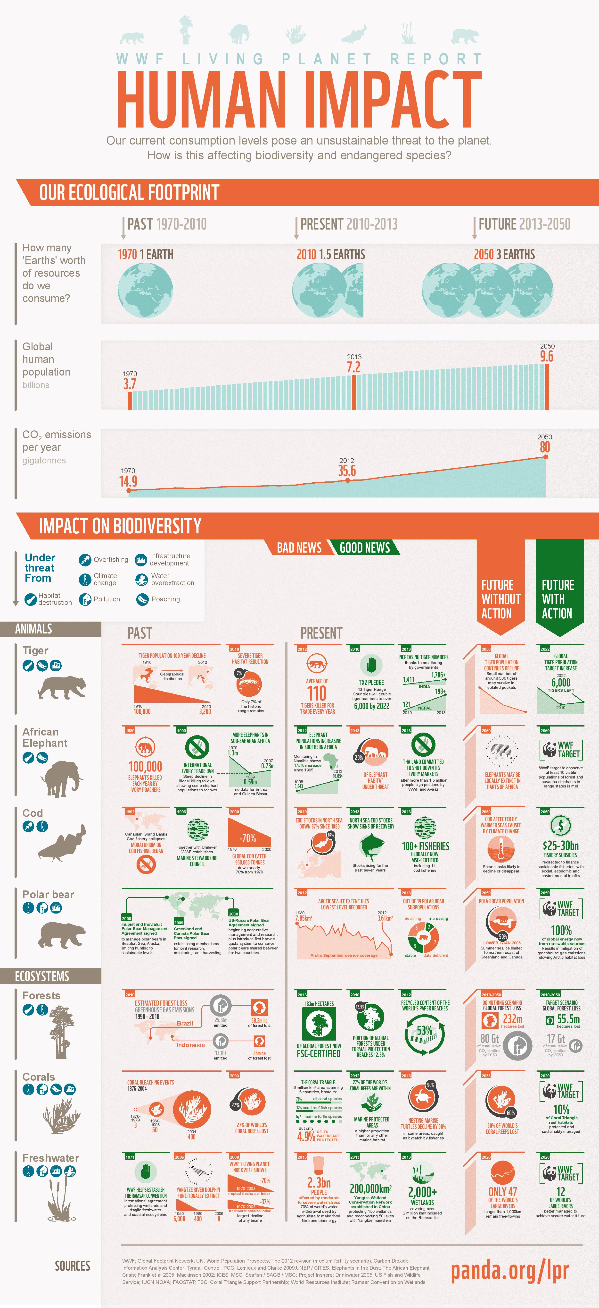 Infographic on Human Impact to the Environment