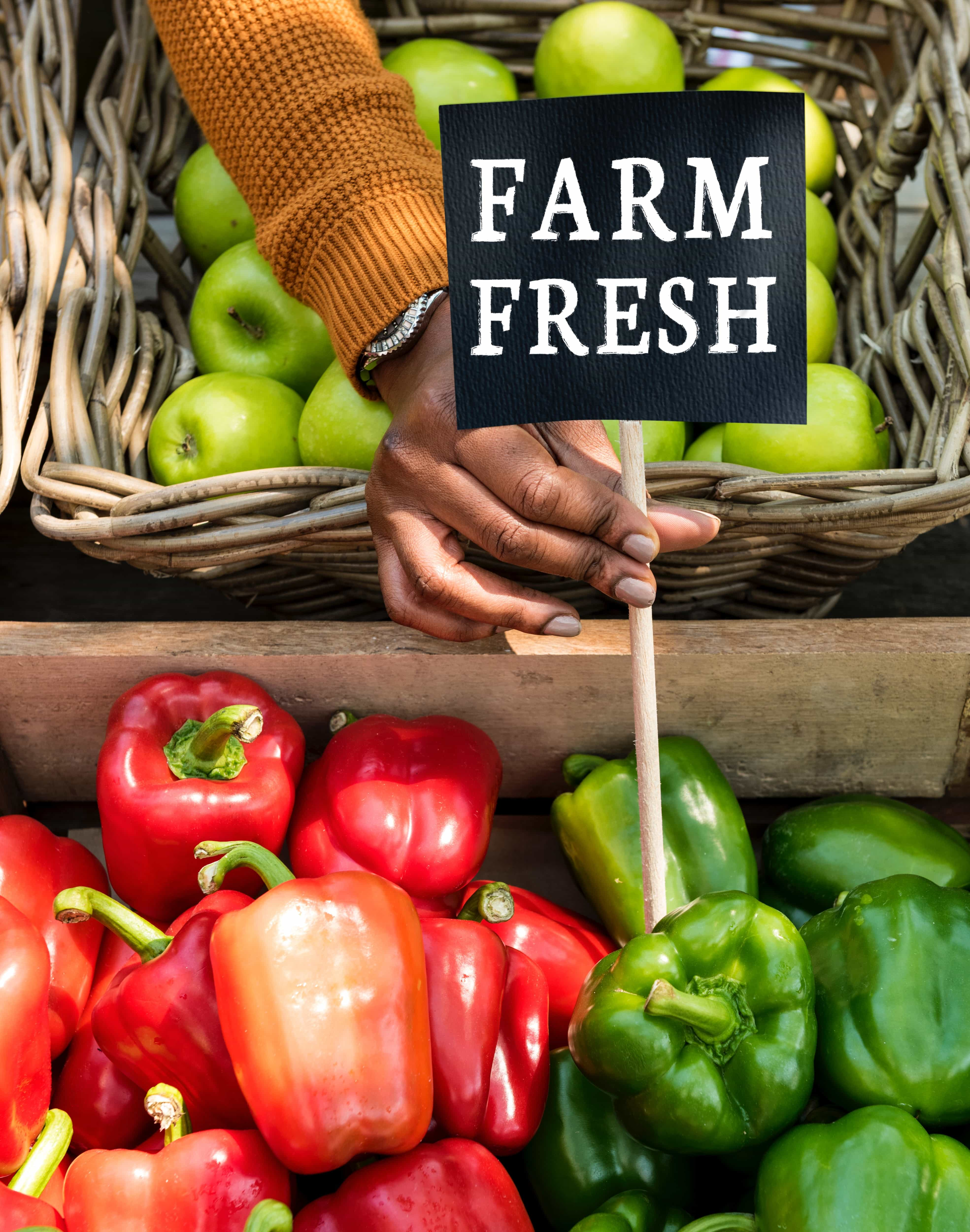 farm fresh bell peppers and capsicum