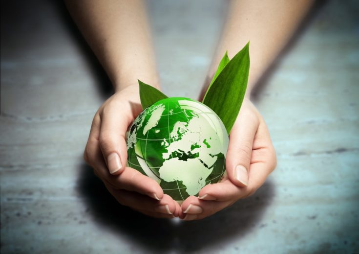 Environmental conservation globe in hand.