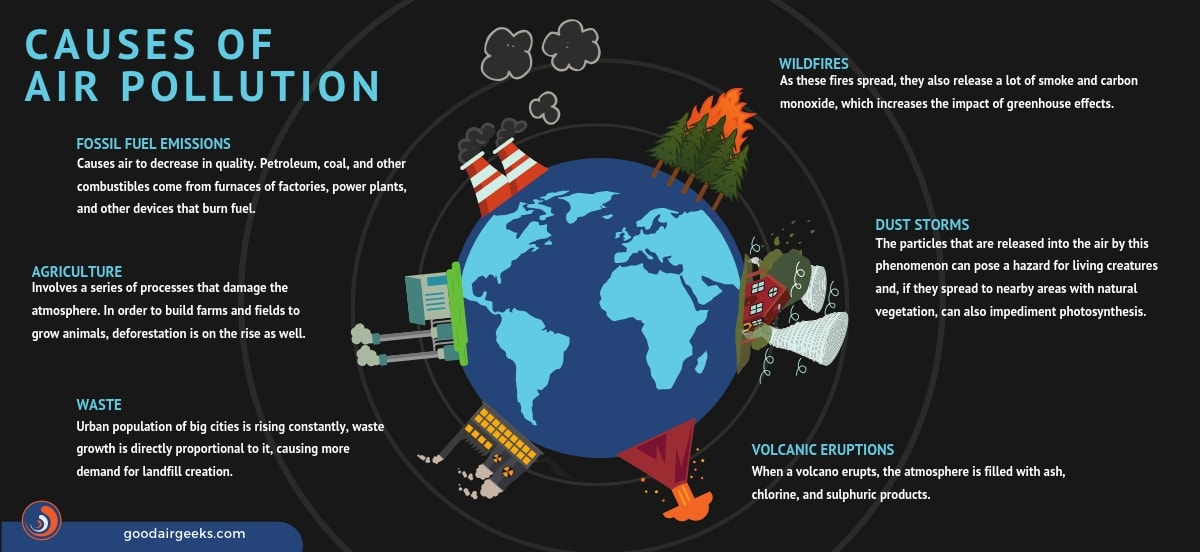 An infographic showing the causes of Air Pollution