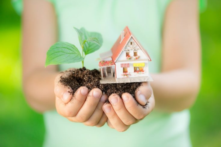 Child holding house and tree in hands against spring green background. Real estate concept